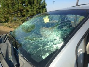 Windshield of Alma's Vehicle